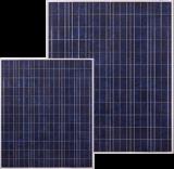 Solarmodul Solaris 50
